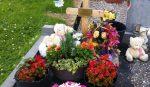 România: o fetiță a murit după ce s-a înțepat într-un cui