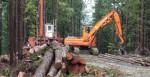 Persoane care să taie copaci – Suedia